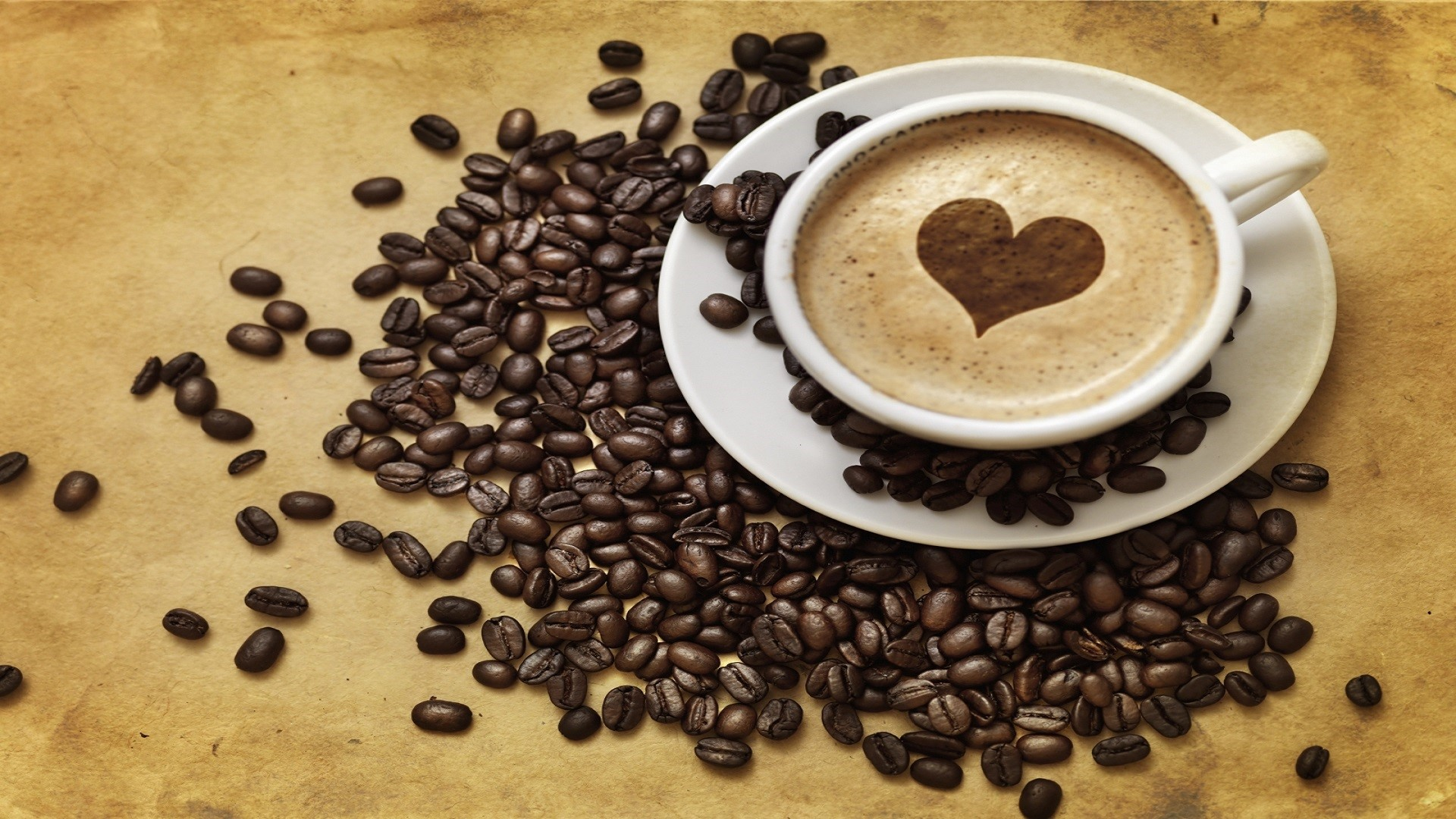 Five Questions It's Worthwhile To Ask About Prima Coffee Equipment